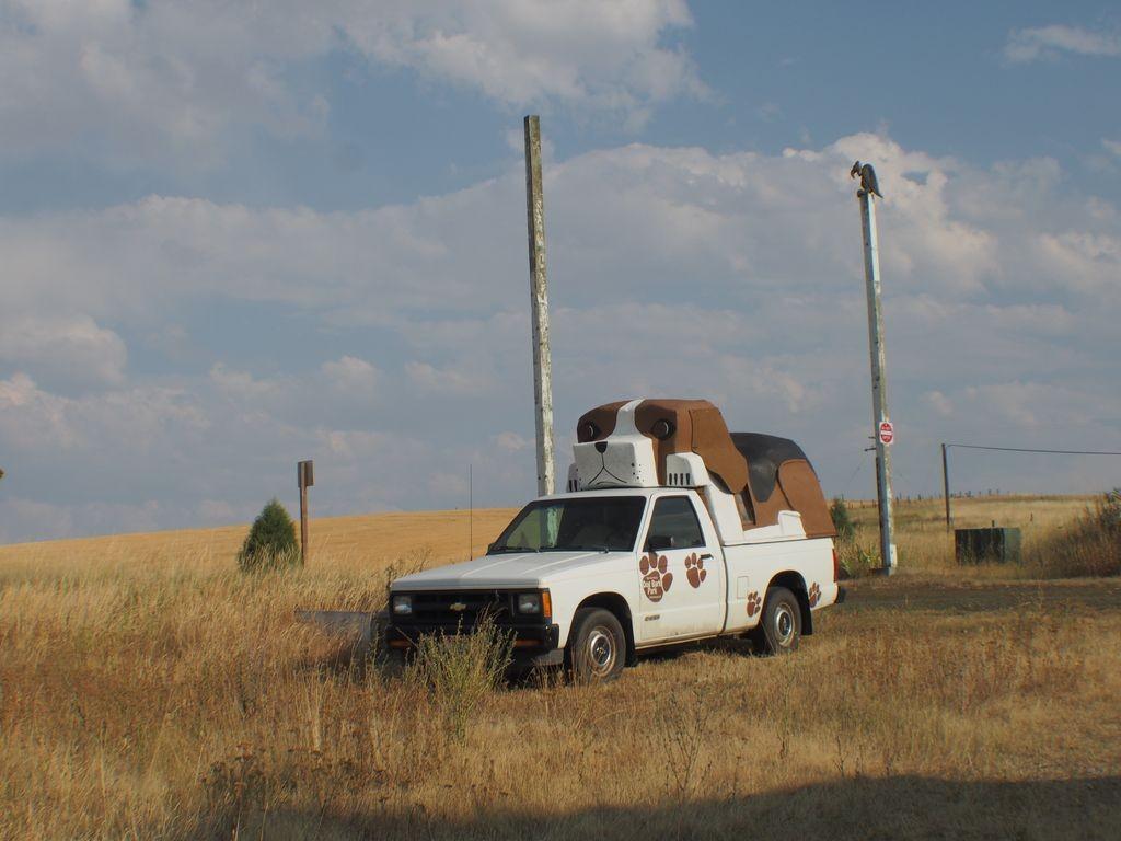 Idaho-DogBarkPark-10