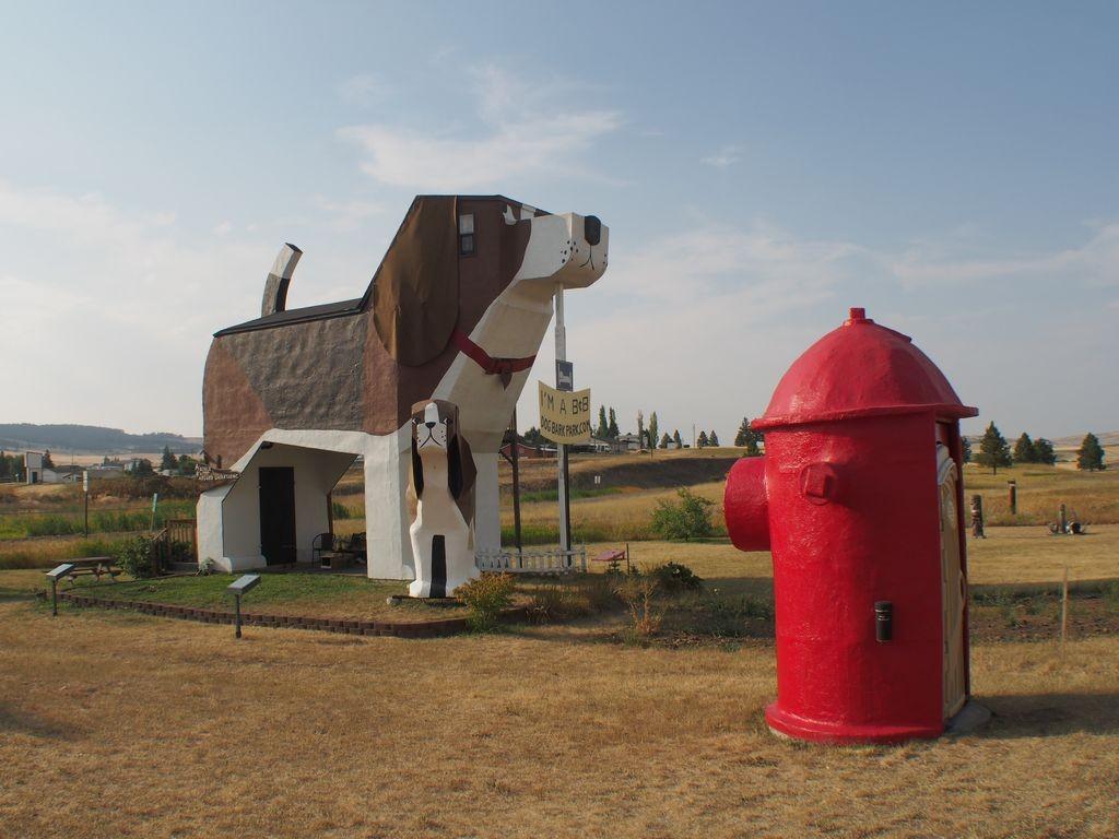 Idaho-DogBarkPark-11