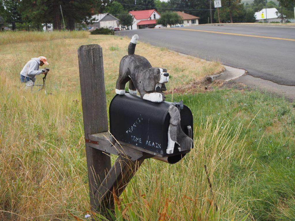 Idaho-DogBarkPark-25