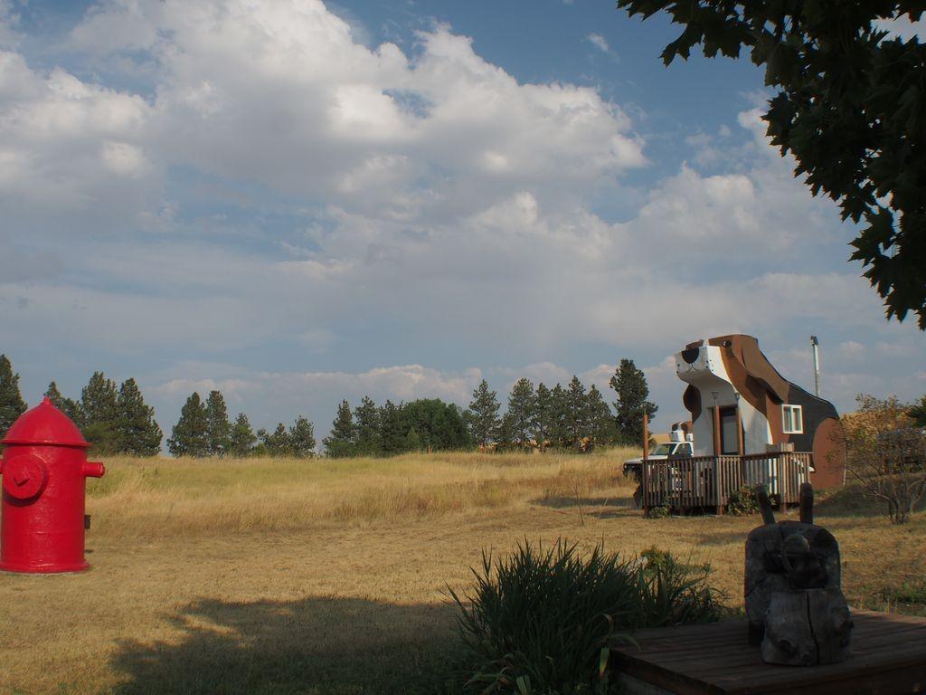 Idaho-DogBarkPark-9