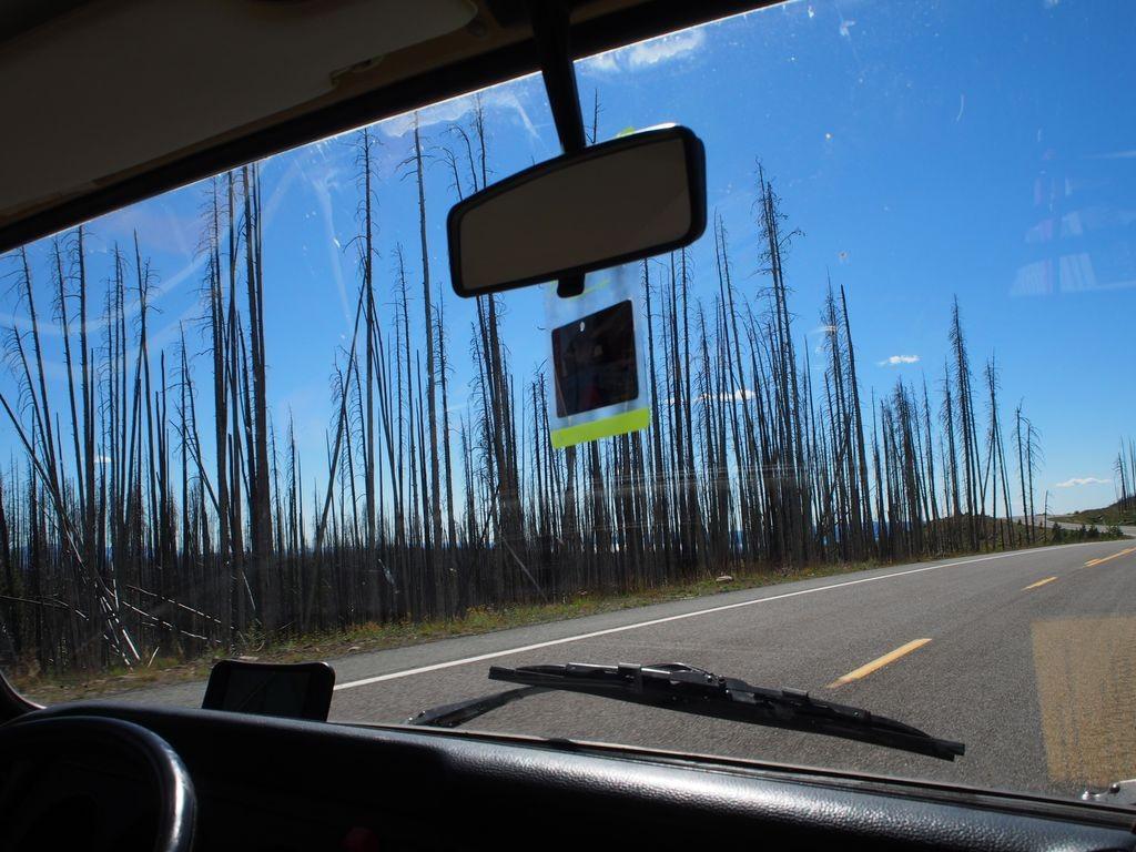 Wyoming-Yellowstone-183